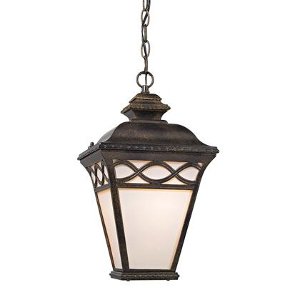8561Eh/70 Mendham 1 Light Outdoor Pendant Lantern In Hazelnut