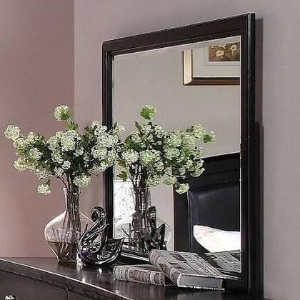 21404 Abram Mirror