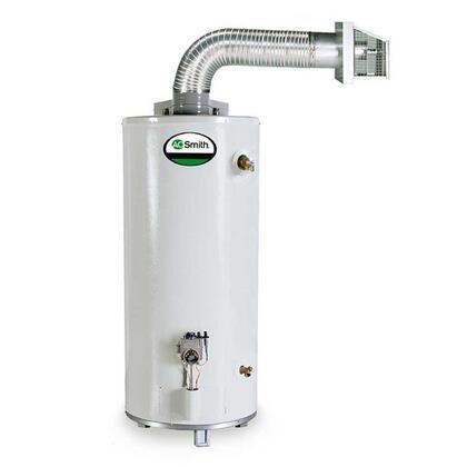 GDV-40 40 Gallon Promax Direct Vent Residential Water