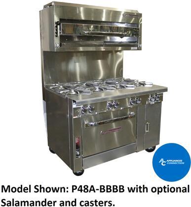 P48CBBBBSU Platinum Series 48