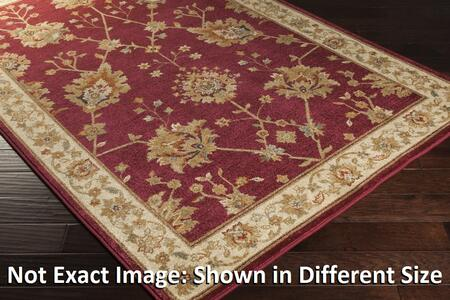 Arabesque Abs3006-2747 27 X 47 Rectangular 100% Polypropylene Rug With No Shedding  Easy Care  Medium Pile  And Machine Made In Egypt In Cherry  Beige
