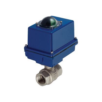 CU81600-3 CU81600-3 Automatic Blowdown