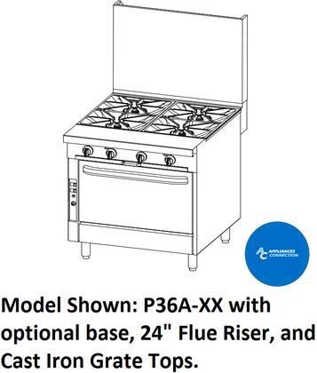 P36NXX Platinum Series 36