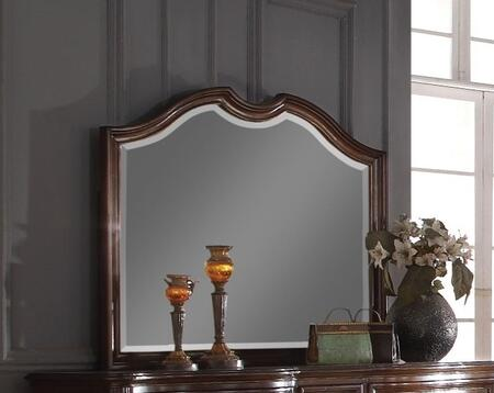 Azis Collection 23774 46 inch  x 38 inch  Mirror with Beveled Edges  Rectangle Shape and Wood Construction in Dark Walnut