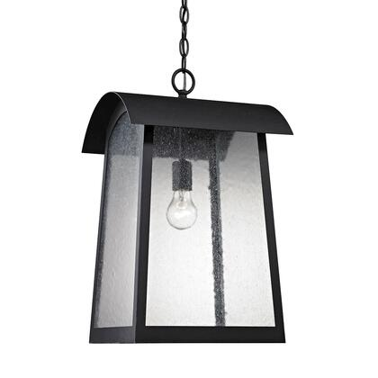 8721Eh/65 Prince Street 1 Light Outdoor Pendant In Matte