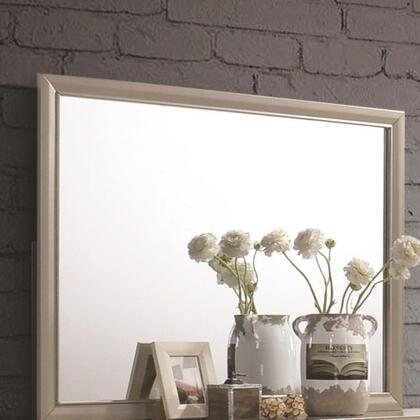 Beaumont 205294 46 inch  x 36 inch  Mirror in Champagne Gold Finished