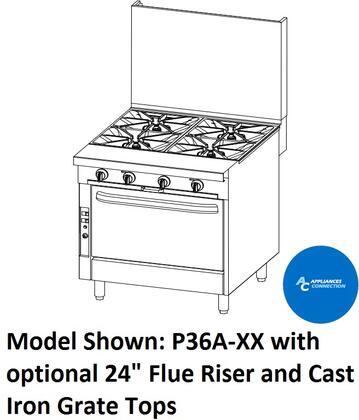 P36DXX Platinum Series 36