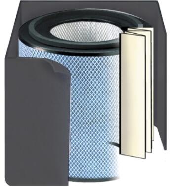 FR405A Standard Allergy/HEGA Filter