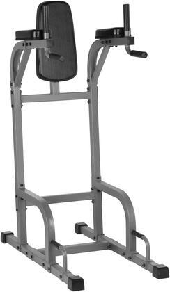 XM-4437.1 VKR Vertical Knee Raise with Dip