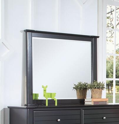 Mallowsea 30394 48 inch  x 38 inch  Mirror with Beveled Edge and Pine Wood Construction in Black