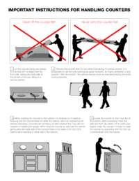Counter Handling Instructions