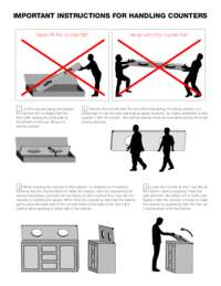 Counter Handling Instructions
