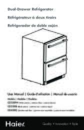 DD300RW Manual