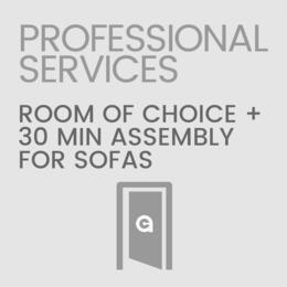 Professional Services SOFASETUP