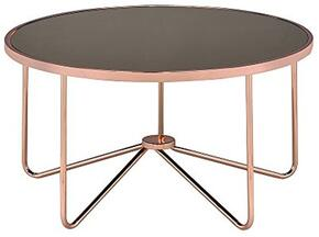 Acme Furniture 81840