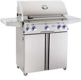 American Outdoor Grill 30PCL