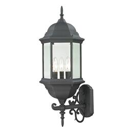 Thomas Lighting 8603EW65