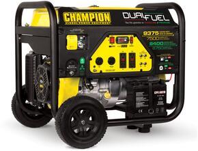 Champion Power Equipment 100165