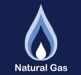FUEL-NG Natural Gas Option