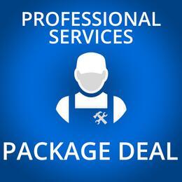 Professional Service 338027