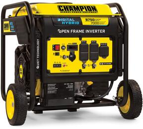Champion Power Equipment 100520