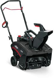 Briggs and Stratton 1697099