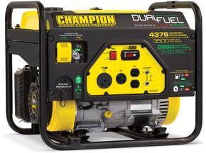 Champion Power Equipment 100307