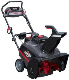 Briggs and Stratton 1697293