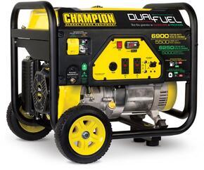 Champion Power Equipment 100231
