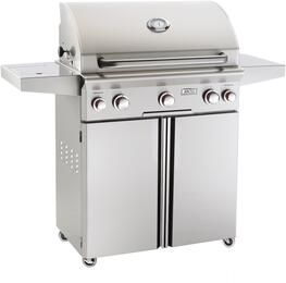 American Outdoor Grill 30PCT00SP