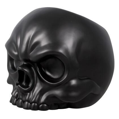 NE17020562 Black Skull