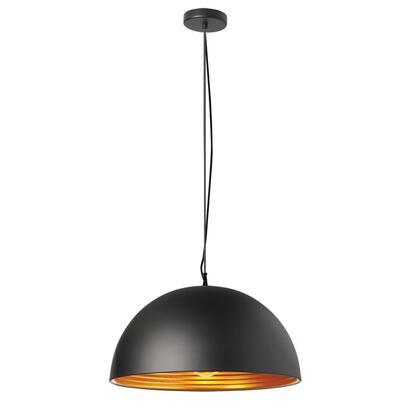 Dainolite HKI201LPBK Ceiling Light, DL 6c4ba9b8105b1f595cca039b7ca0