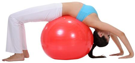 Sunny Health and Fitness NO055 Fitness Ball Red, Gym Ball