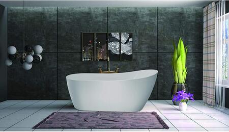 Vanity Art Clermont VA6904S Bath Tub White, 71Z2mUjORGL. AC SL1500
