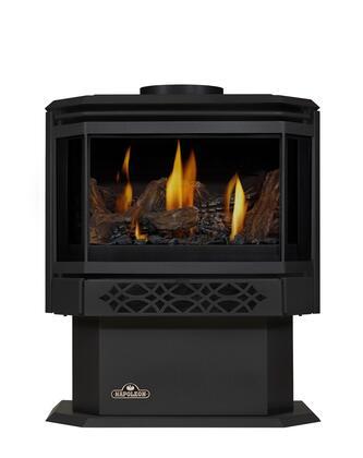 Napoleon Haliburton GDS281NSB Gas Heating Stove Black, With Black Door