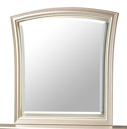 Faisal Collection 1074CHFAI Transitional Style Mirror In Champagne Finish
