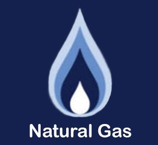 Blodgett  FUELNG Blodgett Fuel Type Option , Natural Gas