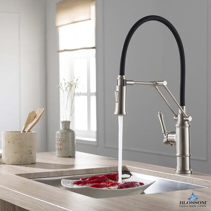 F01 209 02 Single Handle Pull Down Kitchen Faucet – Brush