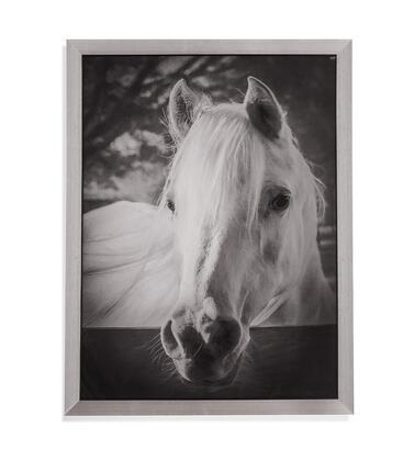 Bassett Mirror Farm 9901193EC Wall Art White, 9901 193EC