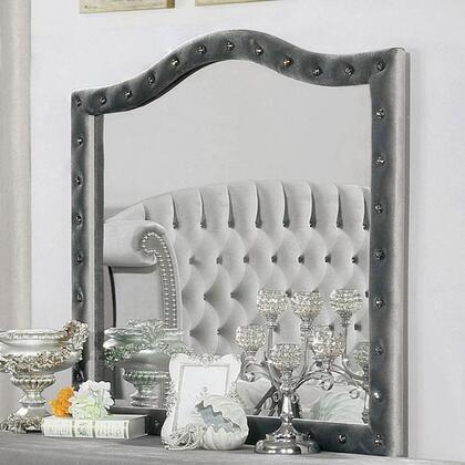 Furniture of America Alzire CM7150M Mirror Gray, CM7150M