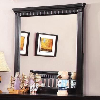 Furniture of America Caspian CM7920BKM Mirror Black, Main Image