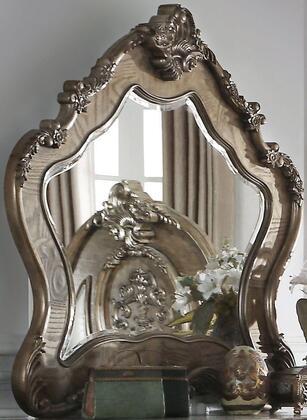 Acme Furniture Ragenardus 2627M Mirror, 1
