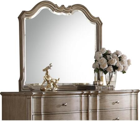 Acme Furniture Chelmsford 26054 Mirror Brown, Angled View