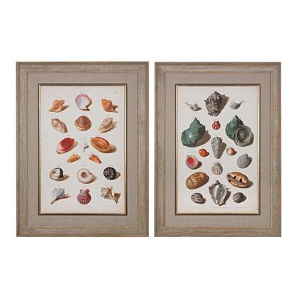 Sterling Muller Shells 151020S2 Wall Art White, 1