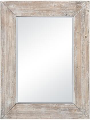 Pomeroy Chandler 916762 Mirror , 916762