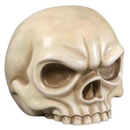 NE1702056 Bone Skull