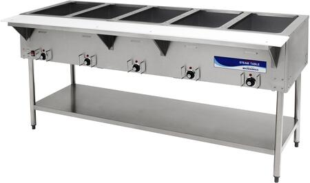 Radiance  RST5P240 Commercial Electric Steam Table Stainless Steel, RST5P240 Angled View