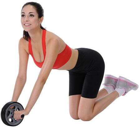 Sunny Health and Fitness NO003 Ab Exerciser Black, Ab Roller Exercise Wheel