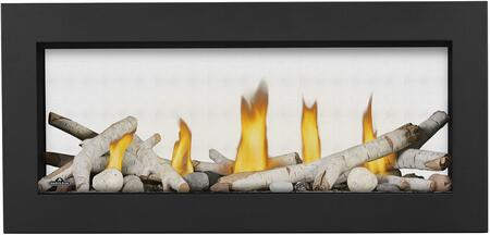 Napoleon Vector LV38N21 Fireplace Black, Birch Logs, Shore Fire, Classic Front Black