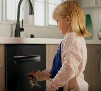 Bosch Black Stainless Steel